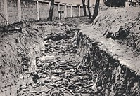 Mass grave of Soviet POWs, killed by Germans in a prisoner-of-war camp in Dęblin, German-occupied Poland
