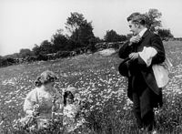 The Country Doctor (1909 film)