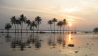 Kerala became a major tourist destination after the state government promoted its natural coastline.