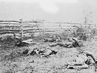 <center>Confederate soldiers on the Antietam battlefield as they fell inside the fence on the Hagerstown road, September 1862 by Alexander Gardner</center>