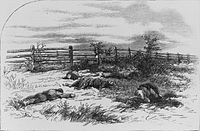 <center>Harper's Weekly drawing of dead soldiers on Antietam battlefield, based on Gardner photograph</center>