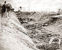 <center>Confederate dead at Bloody Lane, looking east from the north bank. Alexander Gardner photograph.</center>