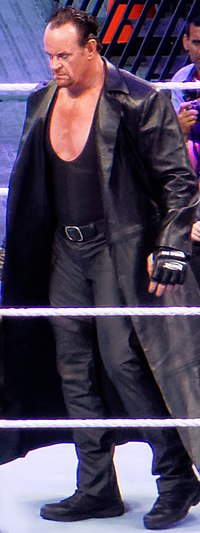 The Undertaker in the ring at WrestleMania 31 in 2015