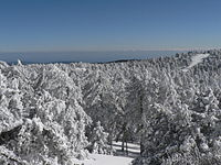 The Troodos Mountains experience heavy snowfall in winter