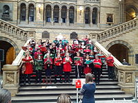 Museum staff singing Christmas carols in the Natural History Museum, London