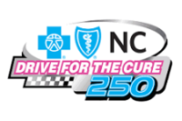 Drive for the Cure 250