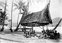 Group of natives at Mairy Pass. Mainland of British New Guinea in 1885.
