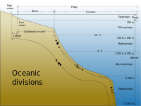List of submarine topographical features