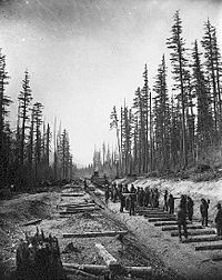 Canadian Pacific Railway Crew laying tracks at lower Fraser Valley, 1883