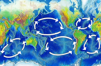 Map of the five major oceanic gyres