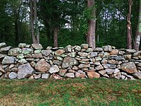 A rock wall (dry stone wall) typical of New England, abundant in Dartmouth.