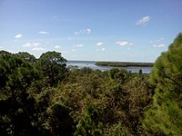 Wall Springs View of St Joseph Sound from the old observation tower