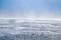 Sea spray containing marine microorganisms can be swept high into the atmosphere where they become aeroplankton, and may travel the globe before falling back to earth.