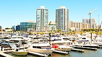 Harbor Point Marina in Stamford during summer