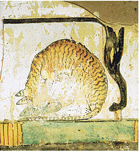 A cat eating a fish under a chair, a mural in an Egyptian tomb dating to the 15th century BC