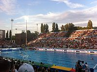 Hungary men's national water polo team is considered among the best in the world, holding the world record for Olympic golds and overall medals