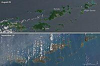 """Operational Land Imager imagery by Landsat 8 of the Virgin Islands from before and after Hurricane Irma's impact, depicting a """"browning"""" of the landscape and vegetation."""