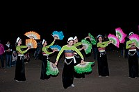 Cultural dance performed by one of 54 recognised Vietnamese ethnic groups.