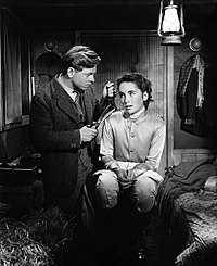 Mickey Rooney and Taylor in National Velvet (1944), her first major film role